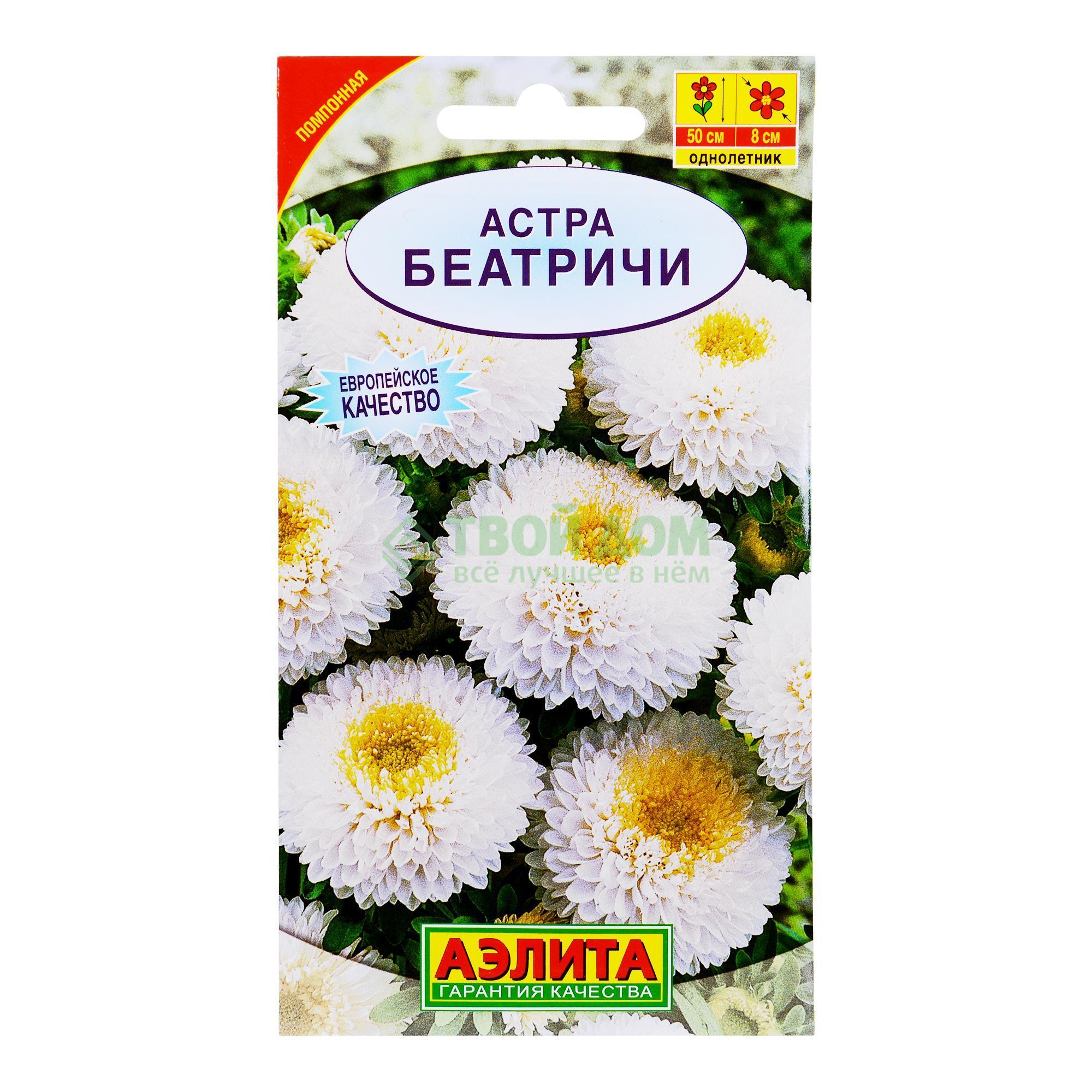 Аэлита Астра Беатричи фото