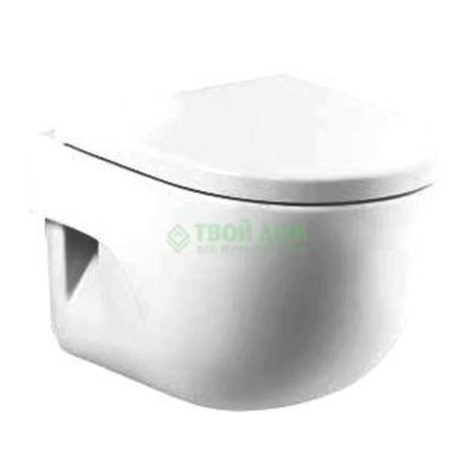 Купить Унитаз Roca Meridian 346248000, унитаз, Испания, белый, сантехнический фарфор