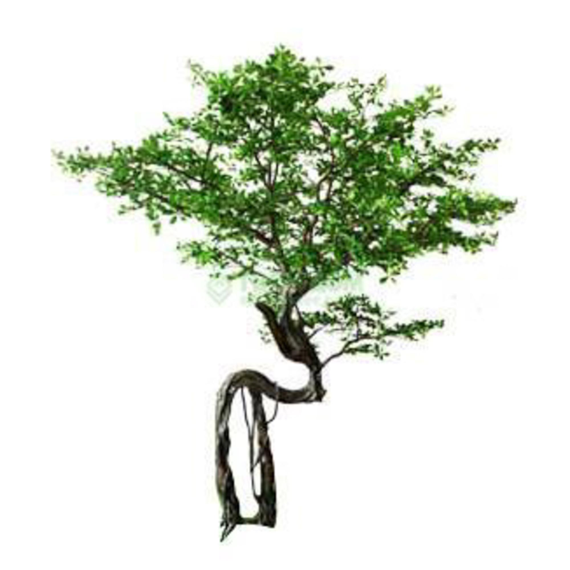 Дерево искусственное Beijing shenglin 3.3м Фикус
