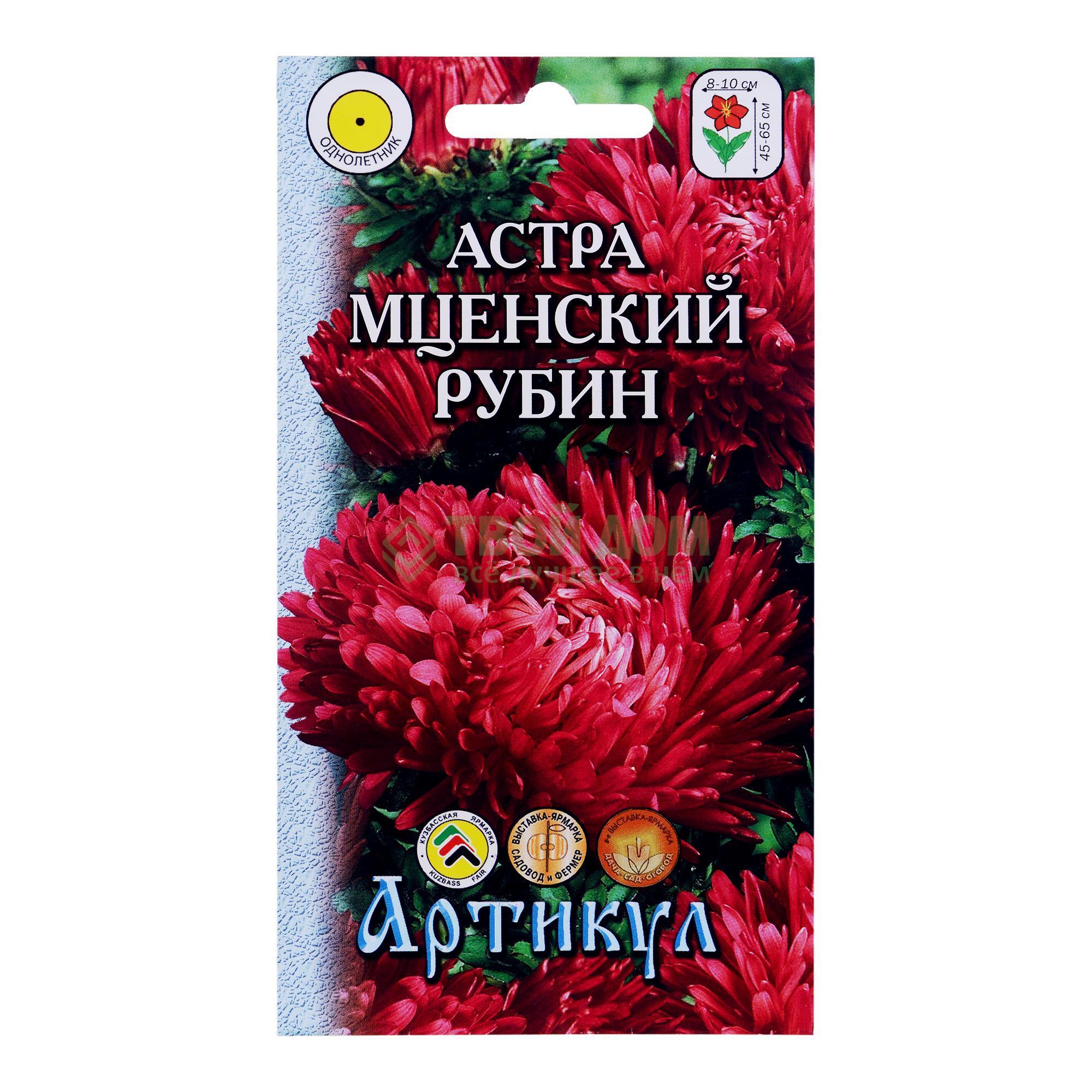 Артикул Астра Мценский рубин фото