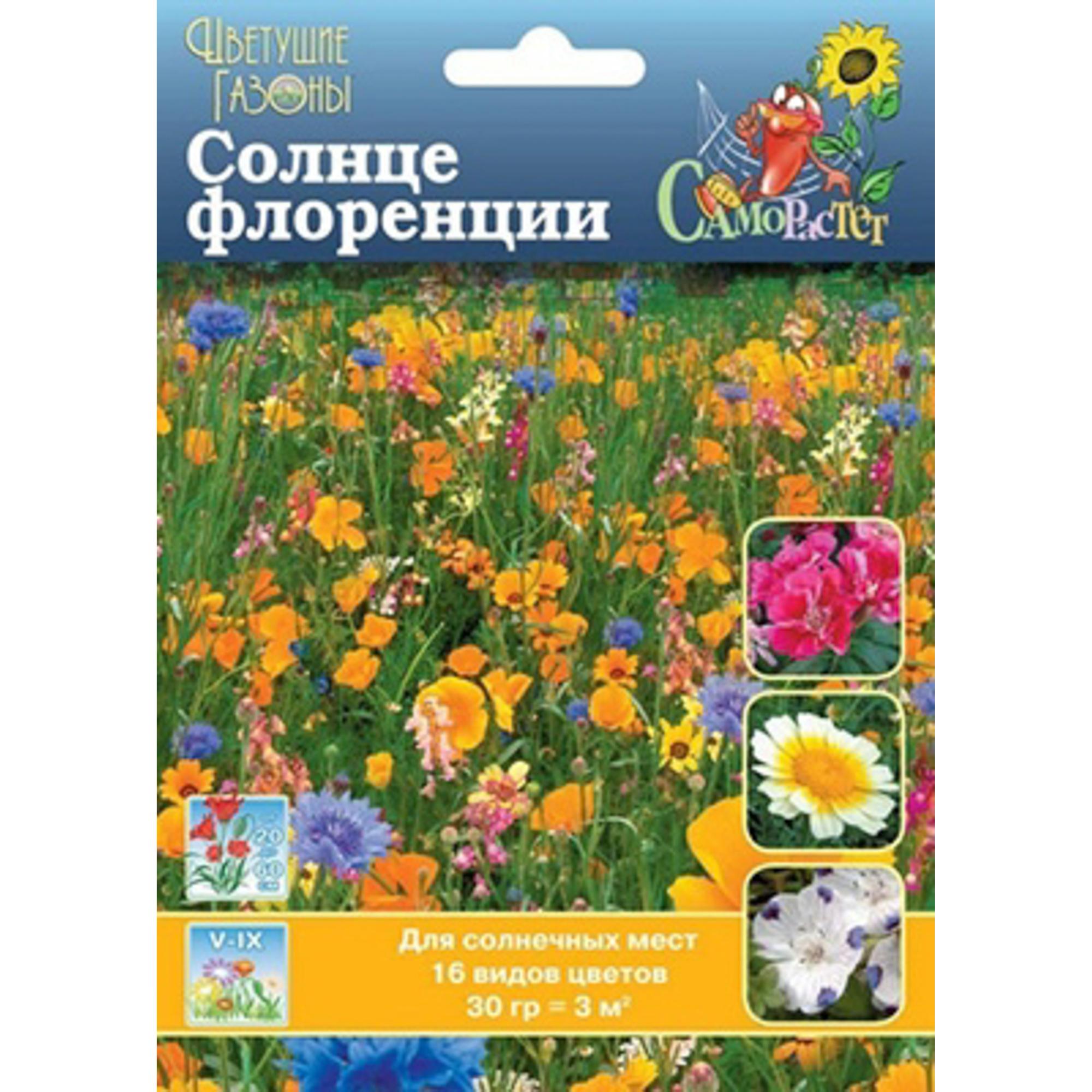 Газон цветущий Русский Огород Солнце флоренции 30 г фото