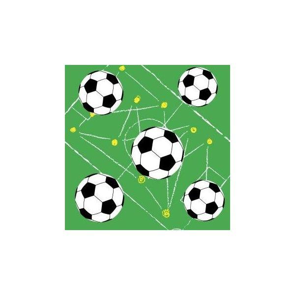 Салфетки трехслойные Duni Soccer 33х33 см 20 шт салфетки duni firenze lime 33х33 см 20 шт