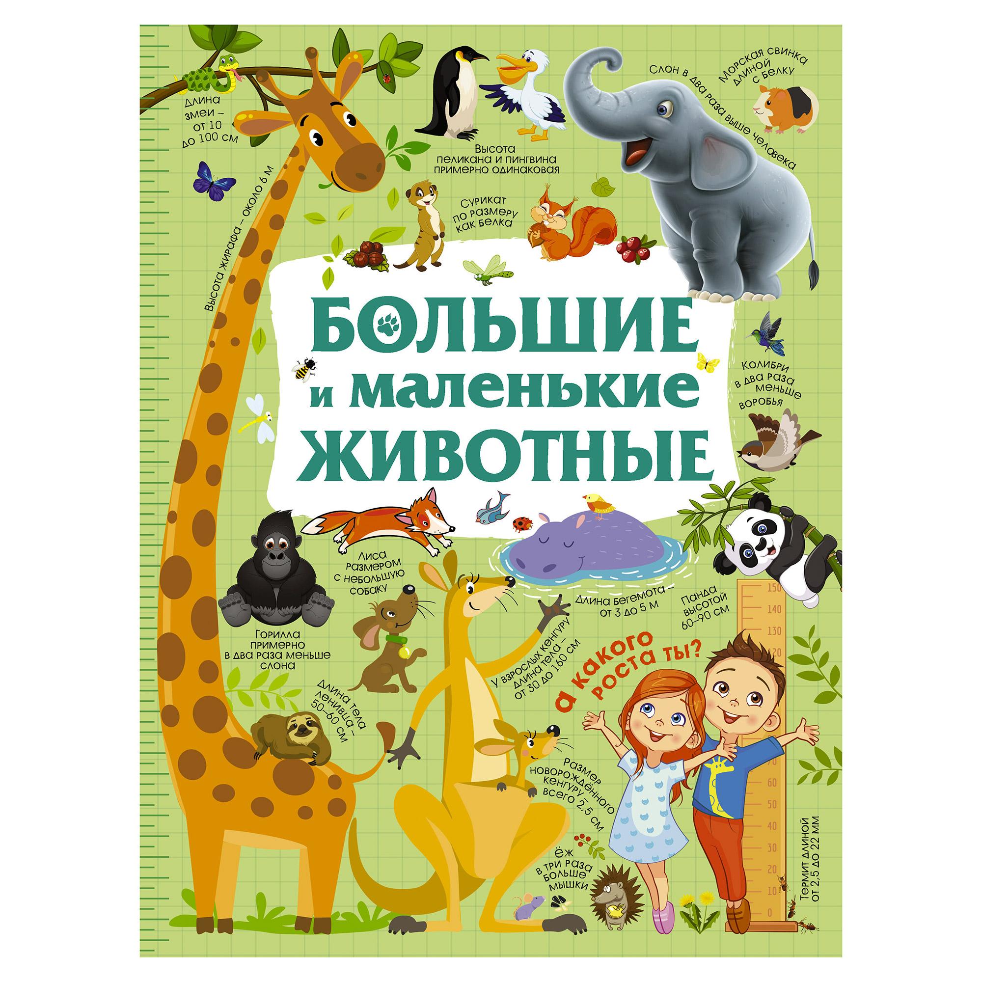 Фото - Книга АСТ Большие и маленькие животные аст большая раскраска животные