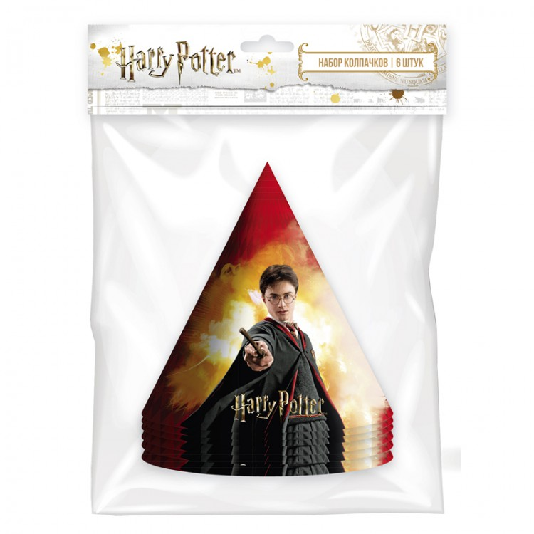 Набор колпачков Harry Potter 12х18 см набор магнитов harry potter wizardry