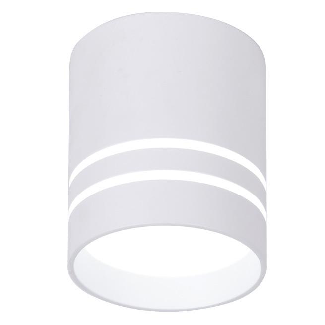 Светильник точечный Ambrella light tn240 wh/s 12w d80х100 фото