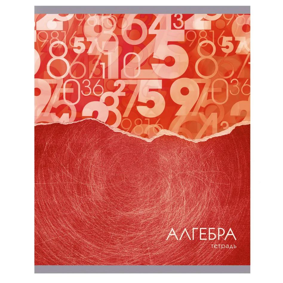 Тетрадь предметная Канц-Эксмо Steel light алгебра 48 л.
