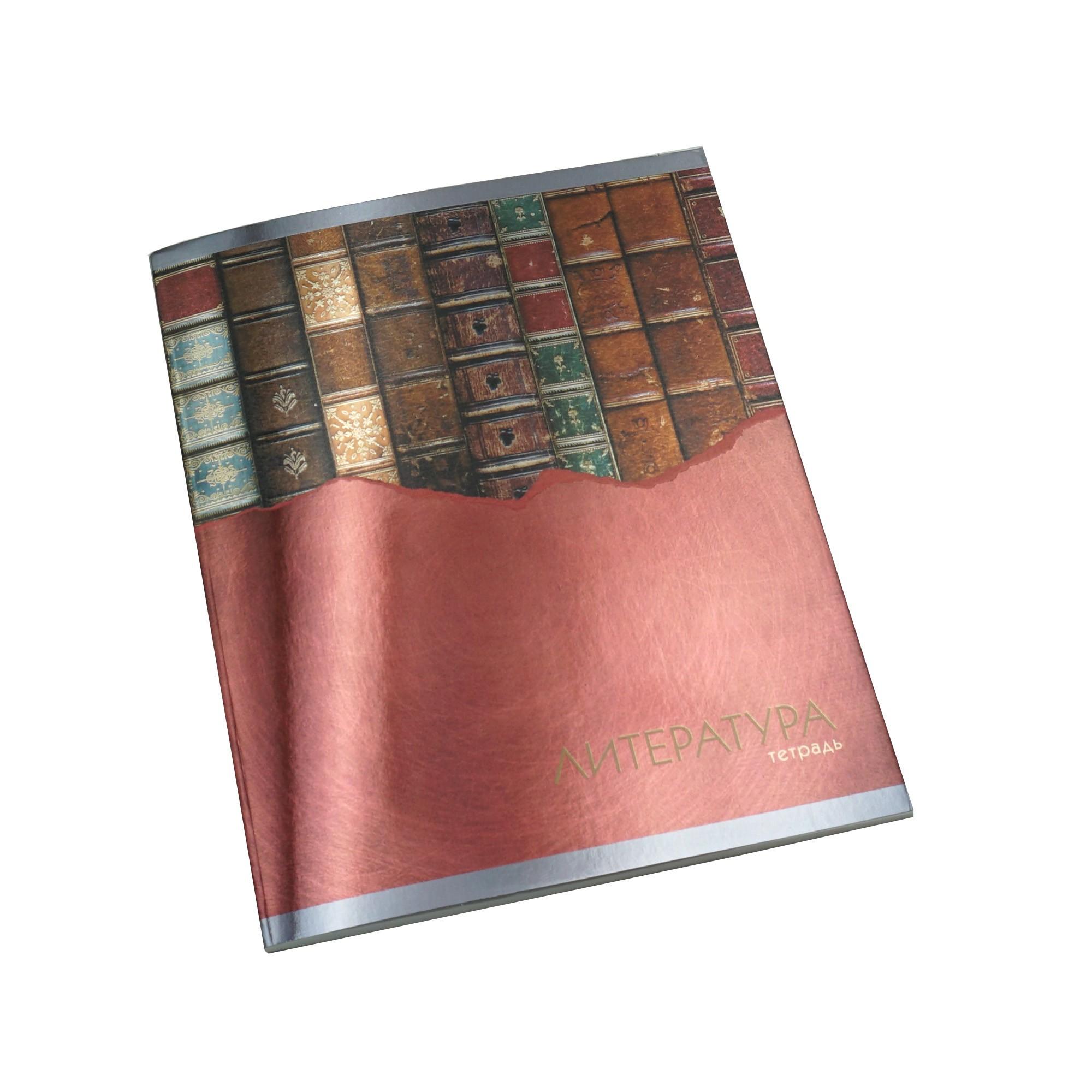 Тетрадь предметная Канц-Эксмо Steel light литература 48 л.
