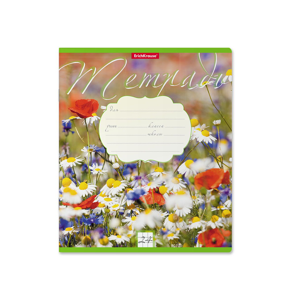 Тетрадь ErichKrause Цветущие луга, 24 листа, линейка фото
