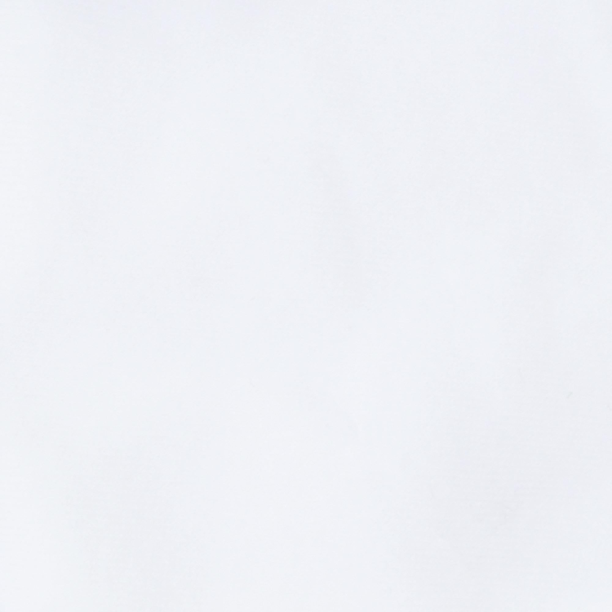 Носки мужские однотонные Lucky Socks НМГ-0110 белые  27-29