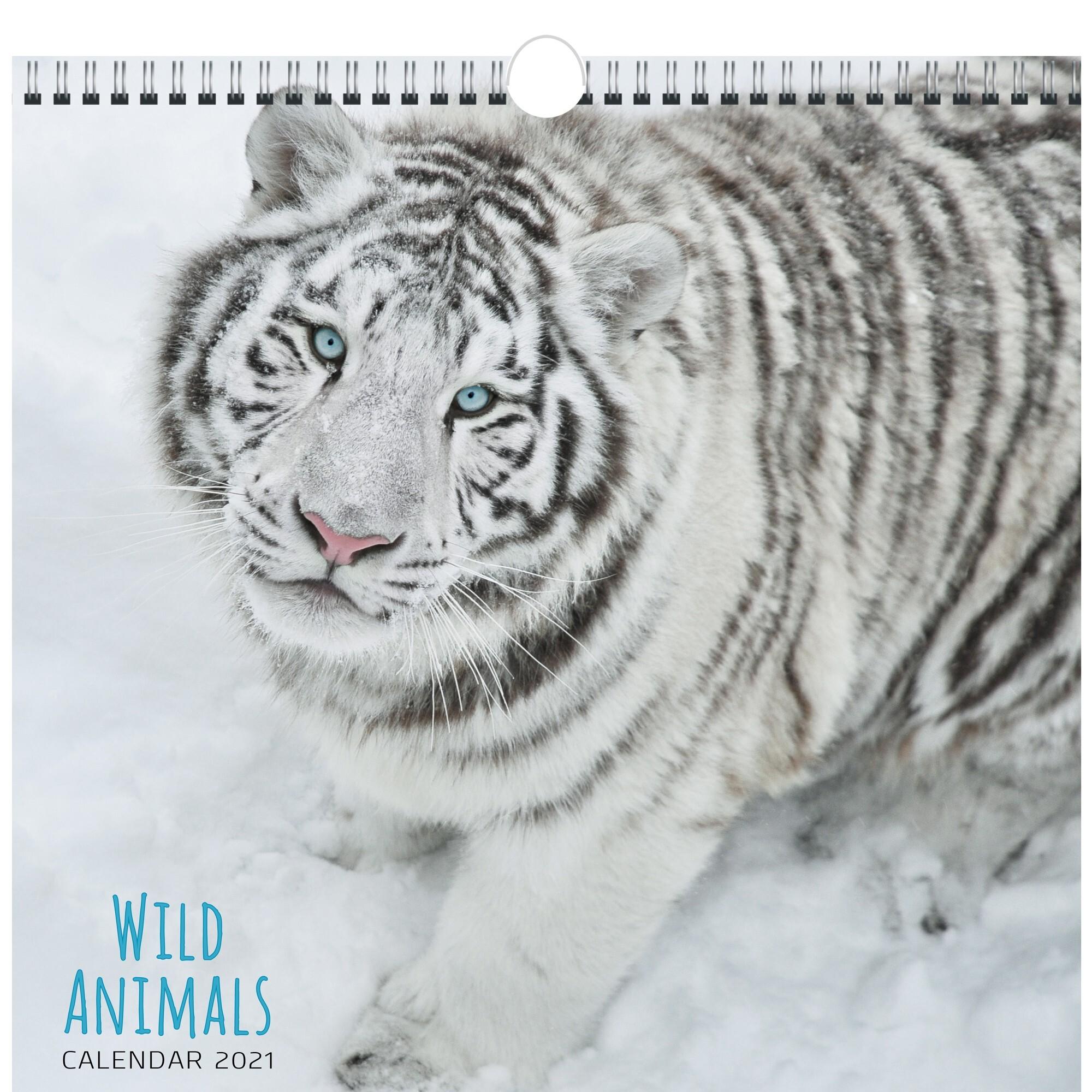 Календарь перекидной Дикие животные (дизайн 2) на 2021 год.