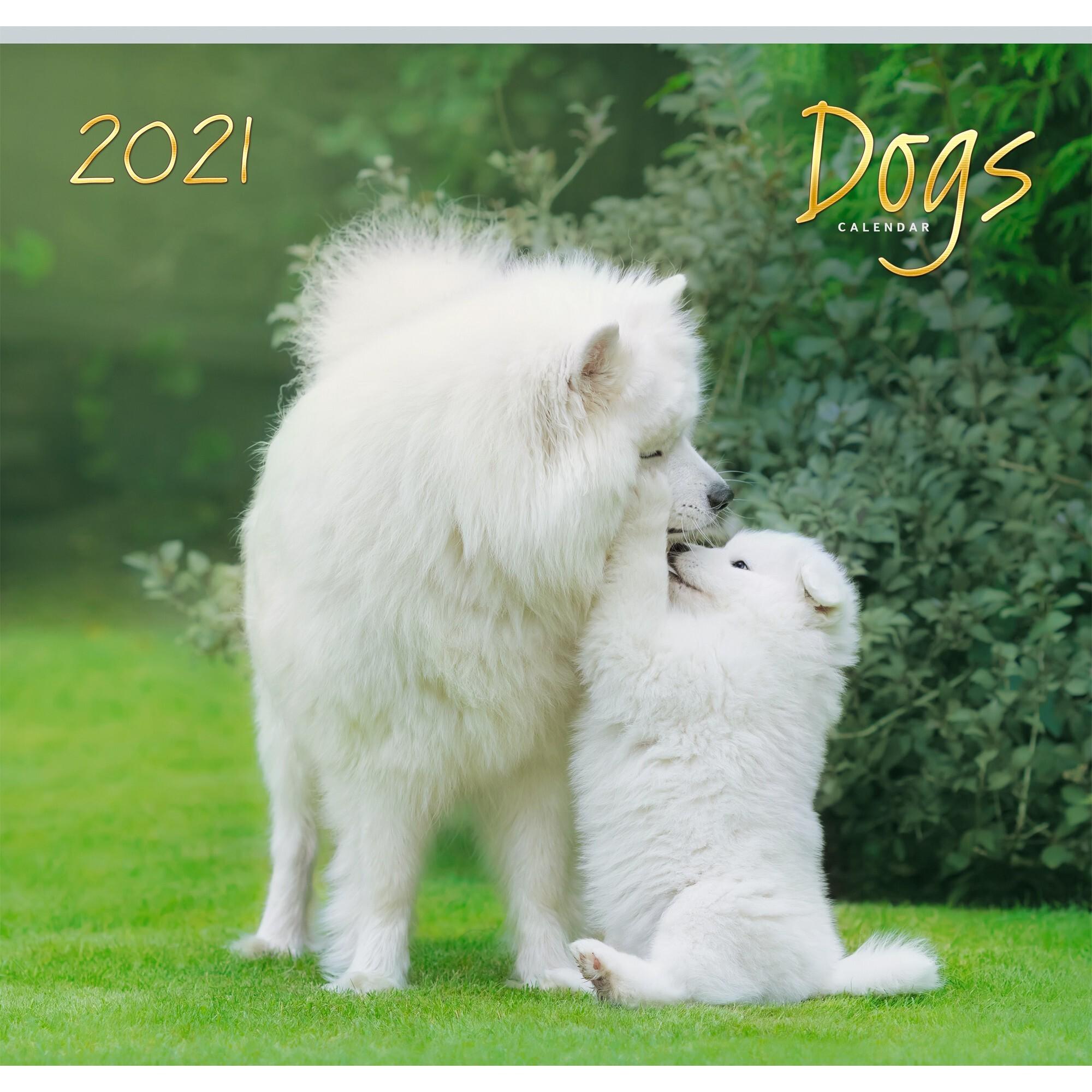 Календарь одноблочный Домашние любимцы (дизайн 1) на 2021 год.
